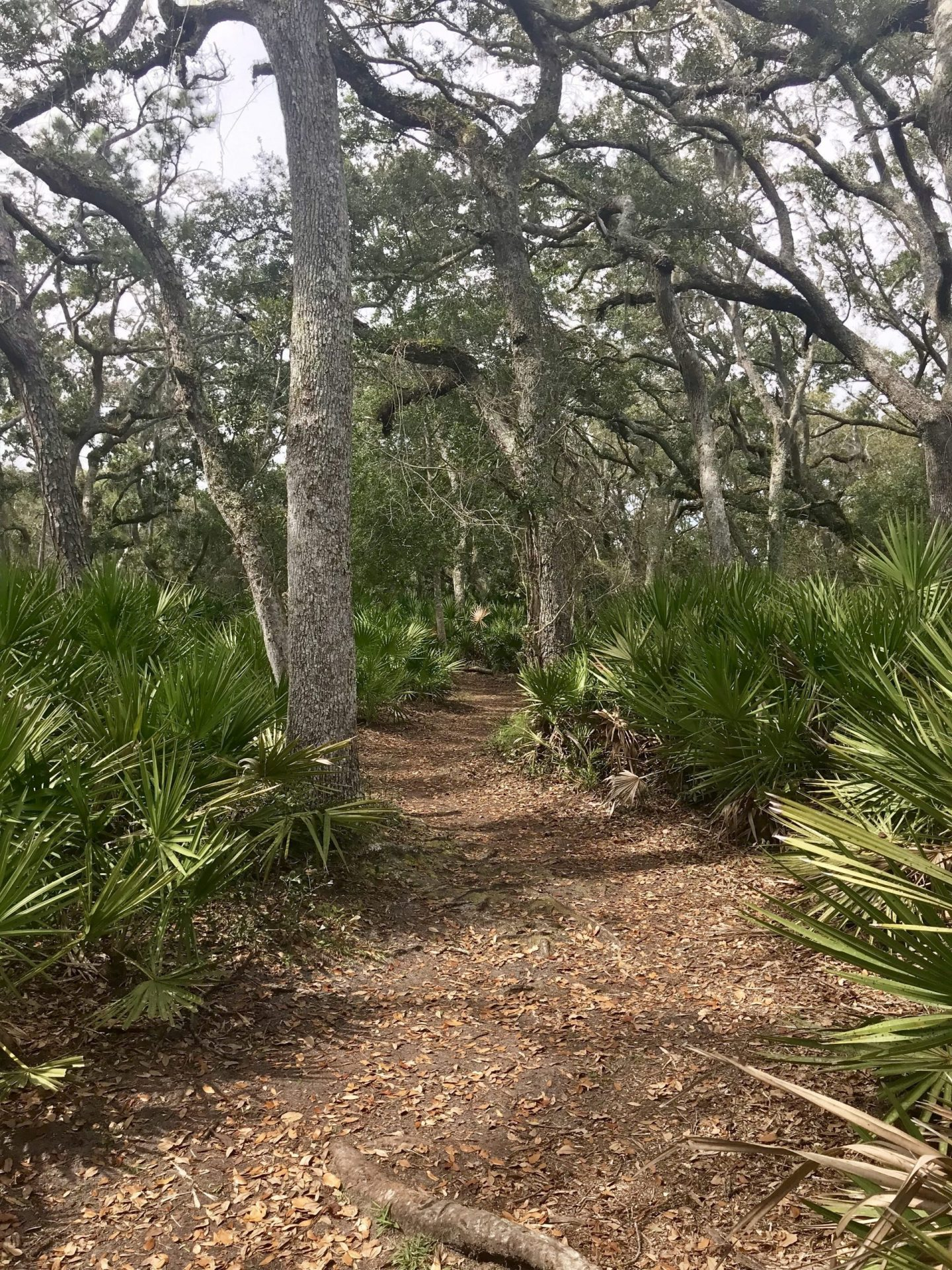 trails at guana reserve